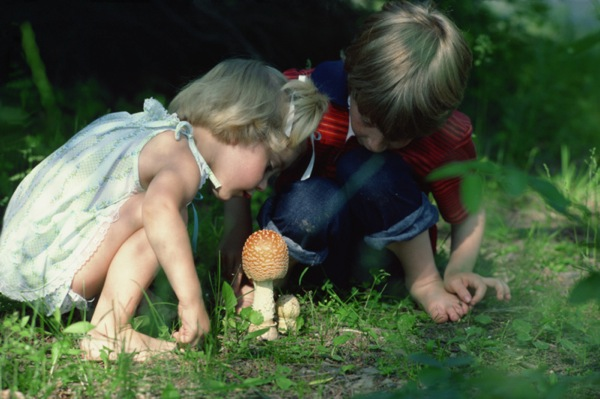 http://www.preschools4all.com/image-files/kids-nature.jpg